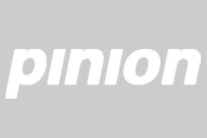 Pinion20